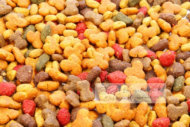 Stock Photo: Dog Food - by Kathy Burns-Millyard