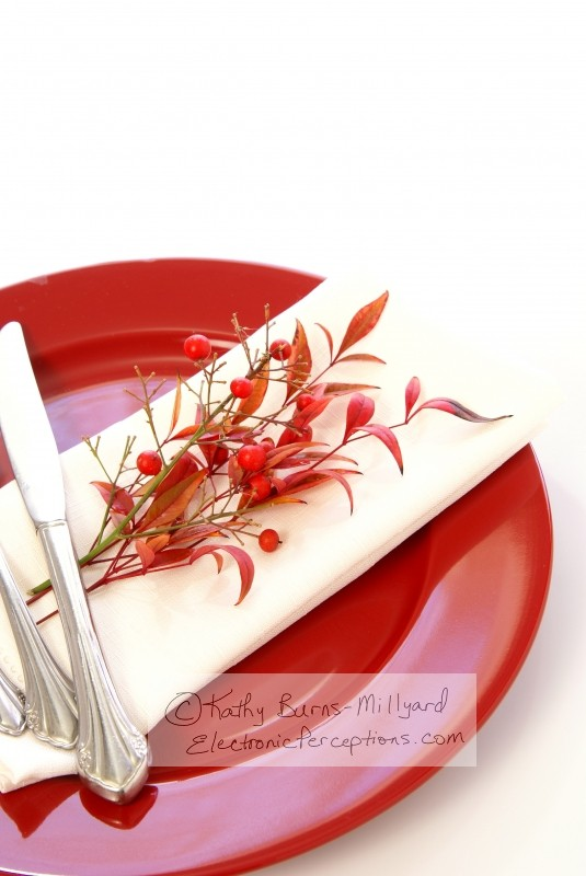 berry Stock Photo: Red Table Setting