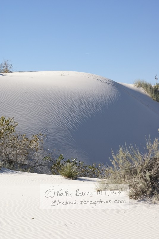 Stock Photo: White Sand Dune - by Kathy Burns-Millyard