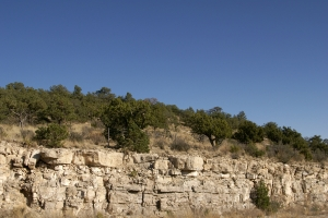 Stock Photo: Trees on Cliff - by Kathy Burns-Millyard