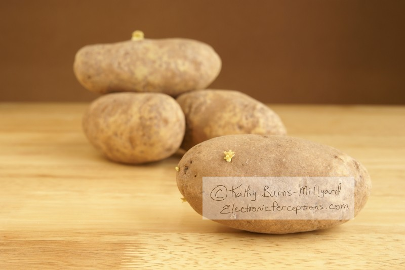 rustic Stock Photo: Raw Potatoes