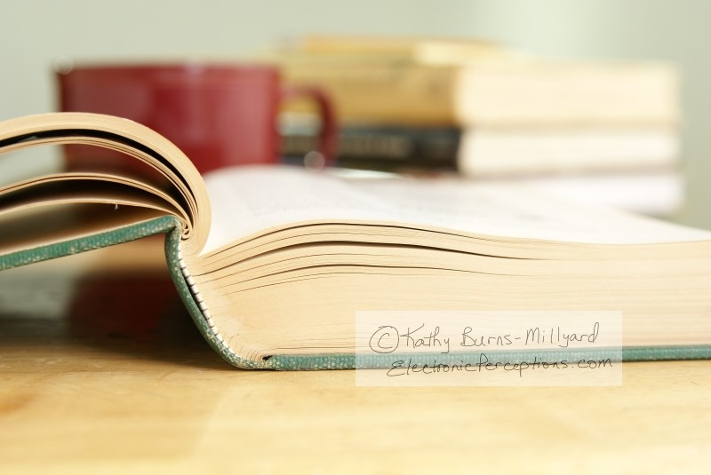 Still Life Stock Photo: Open Book