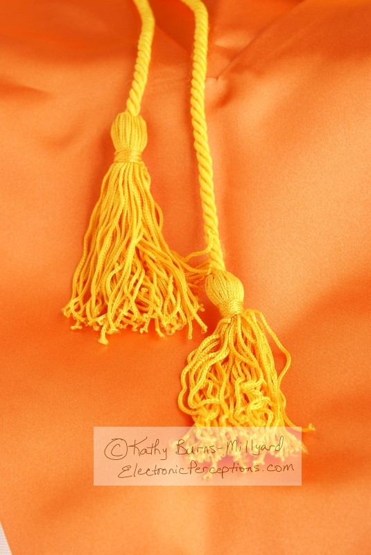 Stock Photo: Two Gold Tassels - by Kathy Burns-Millyard