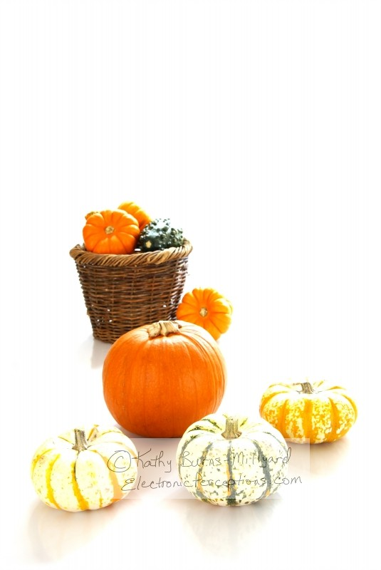 decorations Stock Photo: Autumn Harvest