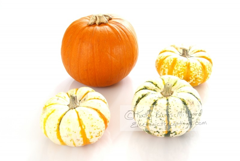 autumn Stock Photo: Pumpkins