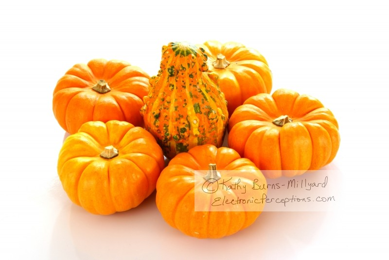 decorations Stock Photo: Pumpkins and Gourd