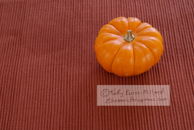 Stock Photo: Pumpkins - by Kathy Burns-Millyard