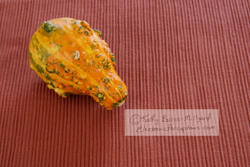 decorations Stock Photo: Orange Gourd