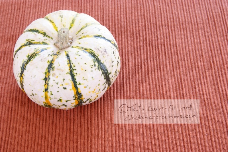 Stock Photo: White pumpkin - by Kathy Burns-Millyard