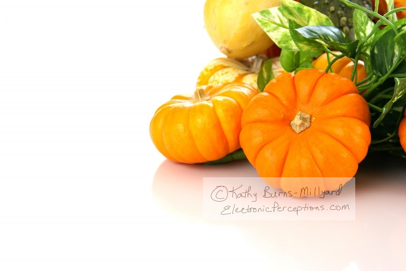 Stock Photo: Autumn Harvest - by Kathy Burns-Millyard