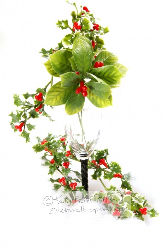 black Stock Photo: Christmas Holly