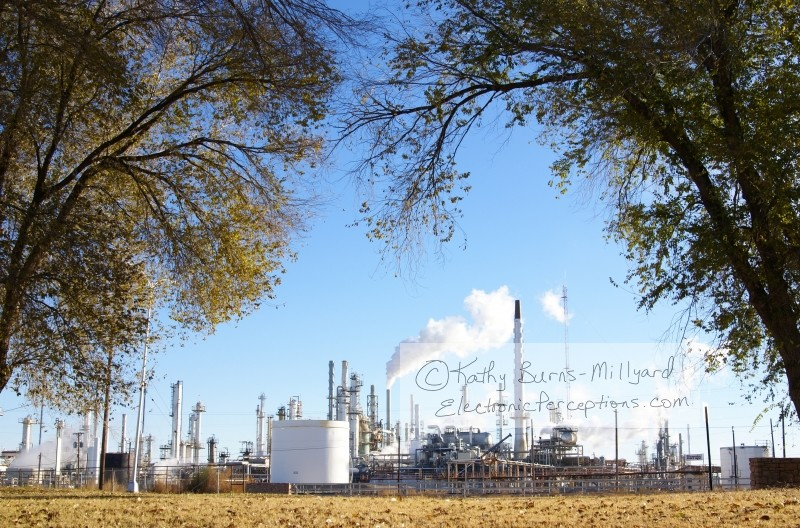 trees Stock Photo: Refinery