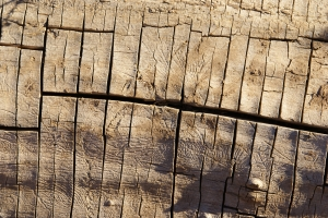 Royalty Free Image: Old Wood