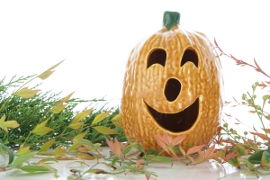 Royalty Free Image: Halloween Decor