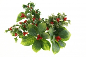 Stock Photo Thumbnail: Holiday Greenery