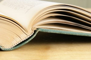 Royalty Free Image: Open Book Pages