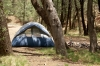 Royalty Free Image: Tent Camping