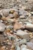 Royalty Free Image: Stones Background