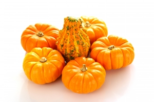 Stock Photo Thumbnail: Pumpkins and Gourd