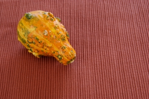 Royalty Free Image: Orange Gourd