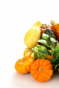 Stock Photo Thumbnail: Autumn Harvest