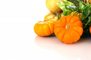 Royalty Free Image: Autumn Harvest